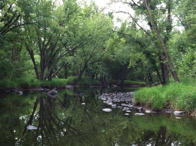 The Snake River runs slower in autumn.